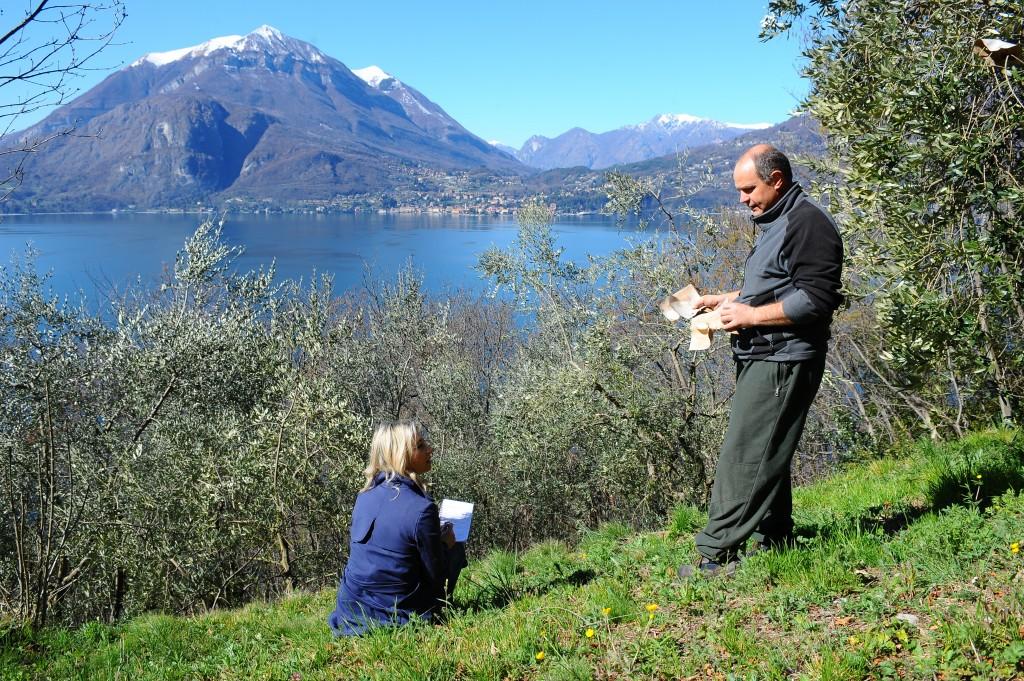 Olio Lago di Como